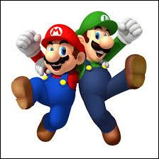 Luigi et Mario sont :