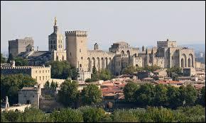 Plus grande construction gothique du Moyen-Age, le Palais des Papes se trouve à ...