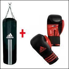 Dans ce sport il y a un ring, des punching-balls et des gants. Quel est ce sport ?