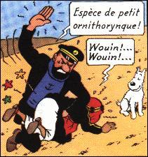 Parmi les jurons du capitaine Haddock, retrouvez celui qui signifie un être entre le singe et l'homme ?