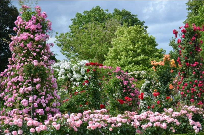Dans quelle ville d'Ile-de-France pouvez-vous visiter ce parc floral !