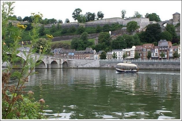 La Meuse est un affluent du Rhin.