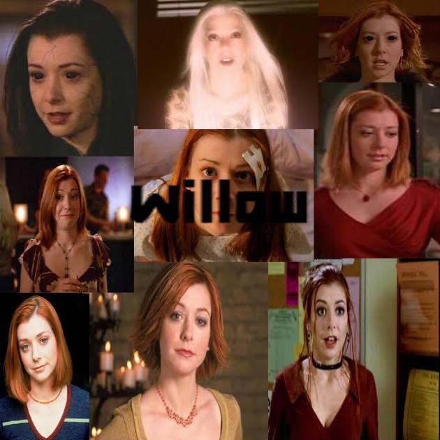 Quelle saison, pour quelle Willow ?