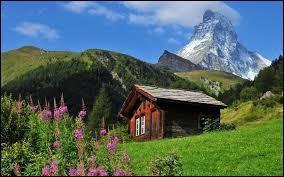 La capitale suisse est Berne et pourtant elle est moins peuplée que ces 4 villes. Quelle est celle qui a le plus d'habitants ?