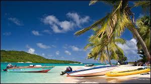 Port-d'Espagne est la capitale de Trinité-et-Tobago mais elle est moins peuplée que Chaguanas. Où se trouve cette île ?