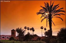 Rabat est la capitale du Maroc mais Casablanca est beaucoup plus peuplée. Quel acteur mythique tenait le rôle principal dans ''Casablanca'' ?