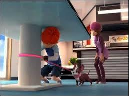 Combien d'épisodes cette série d'animation comporte-t-elle ?