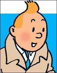 Quel est le métier de Tintin ?