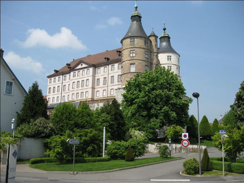 Après la visite du château des ducs de Wurtemberg, dégustez cette saucisse fumée avec de la cancoillotte chaude dans cette ville du Doubs qui est...