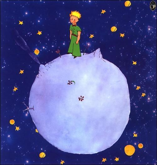Dans le roman de Saint-Exupéry, qui le Petit Prince découvre-t-il en premier lorsqu'il arrive sur la planète Terre ?
