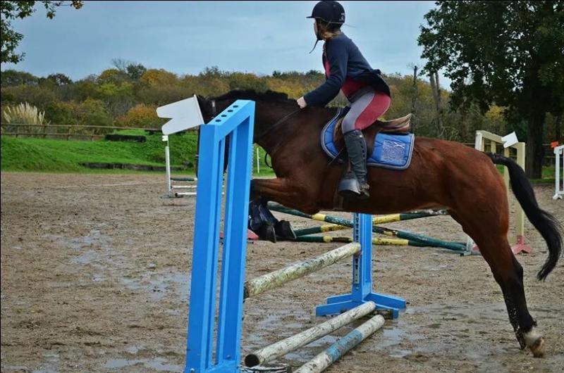 Posture du cavalier à l'obstacle - La position en équilibre.