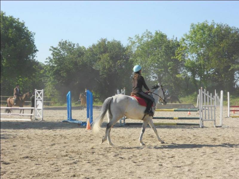 Posture du cavalier à l'obstacle - L'ordre des phases.