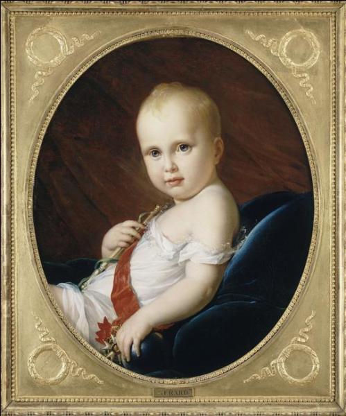 Ce tableau, peint par François Pascal Simon Gérard dit Baron Gérard, représente un membre de la famille impériale. Il représente :