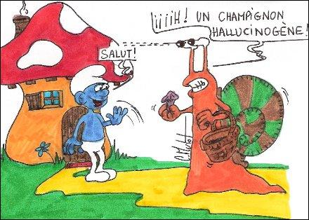 Tous les champignons sont comestibles, ...