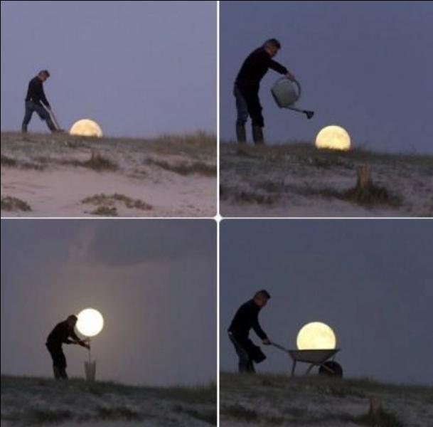 Quand le sage montre la lune, ...