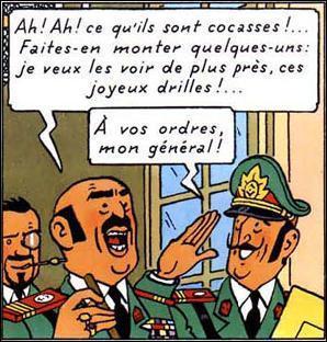 Les moustachus dans Tintin