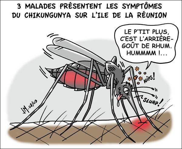 Le moustique de nos mares est en général peu dangereux. Par contre en Afrique, il est le vecteur d'une maladie qui peut s'avérer mortelle.