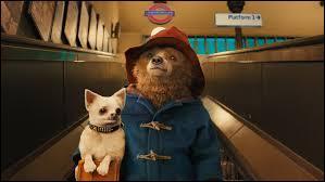 Pourquoi Paddington a-t-il un chien à ce moment ?