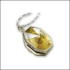 Qui a volé le médaillon à Voldemort ? (tome 6)