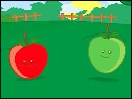 """De quelles couleurs sont les tapis dans """"Pomme de reinette et pomme d'api"""" ?"""