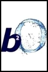 B2o : sur la planète people, qu'est-ce que ce sigle signifie ?