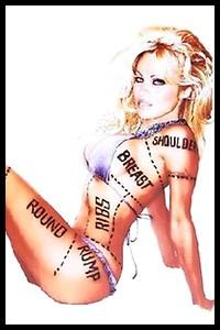 De quelle association Pamela Anderson est-elle l'une des figures de proue ?