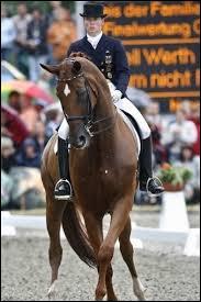 Lorsque le cheval tourne, le mouvement de l'encolure s'appelle...