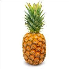 L'ananas se cueille :