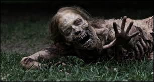 Comment sont surnommés les zombies ?
