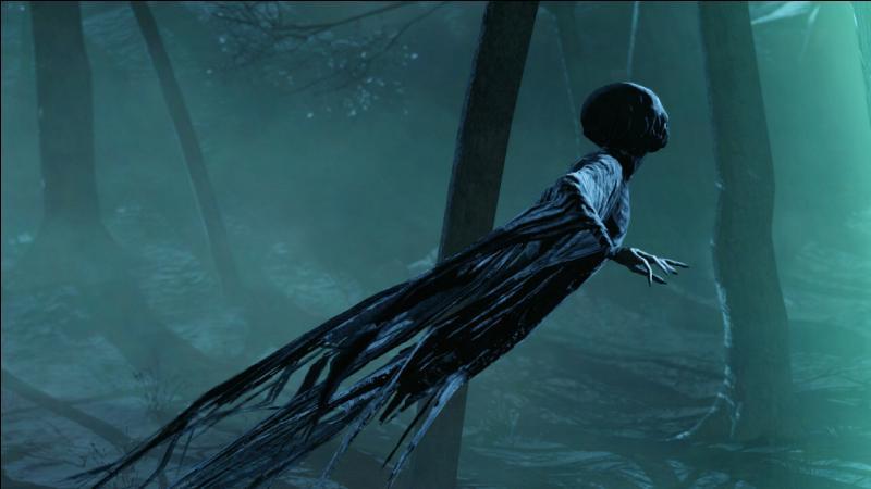 Que provoque le Baiser du Détraqueur sur un sorcier ?