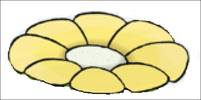 Et encore une fleur ! Remarque, c'est la saison. Comment se nomme le Pokémon qui l'a sur sa tête ?