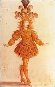 """Quel roi de France été surnommé le """"Roi-Soleil"""" ?"""