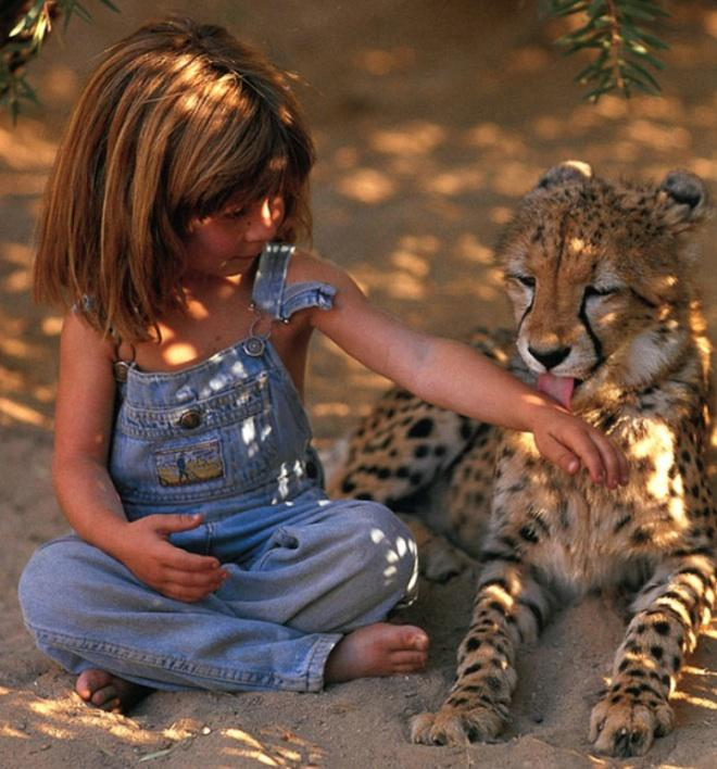 Les bébés animaux 4