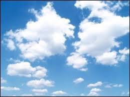 Comment appelle-t-on l'étude des processus physiques et dynamiques de formation des nuages ?