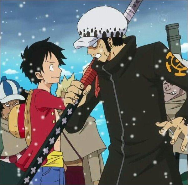Quel empereur est visé par l'alliance de Luffy et Law ?