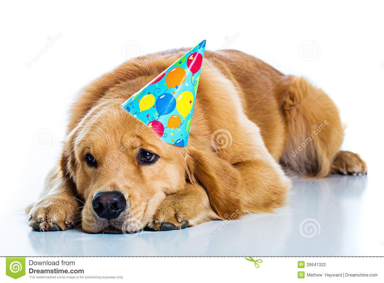 Triste anniversaire !