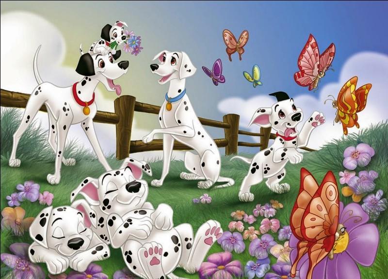 """Dans """"Les 101 Dalmatiens"""", Pongo et Perdita possèdent chacun 72 et 68 tâches."""