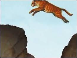 Vrai ou faux ? Dans les livres en préparation, Poil d'Écureuil aura des vrais enfants avec Griffe de Ronce.