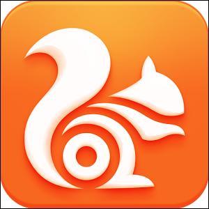Ce logo identifie le navigateur internet :