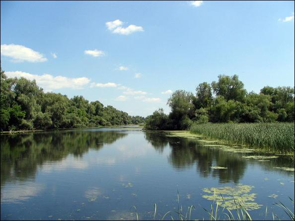 Lequel de ces trois fleuves prend sa source en Allemagne ?