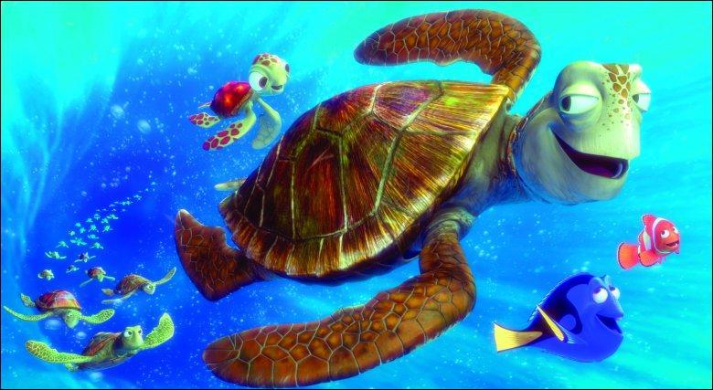 Comment s'appelle la tortue ?