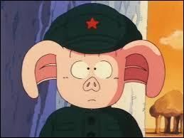 Ce sympathique cochon, nommé Oolong, est l'ami d'un certain Sangoku. Par conséquent, c'est un personnage du célèbre manga :