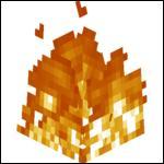 Quel est le seul moyen de s'éteindre du feu rapidement dans le Nether ?