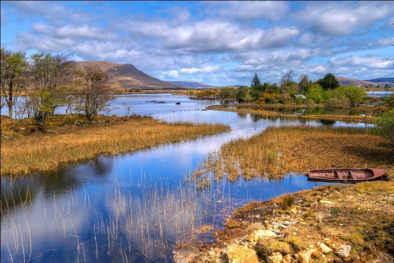 Quel est le symbole de l'Irlande ?