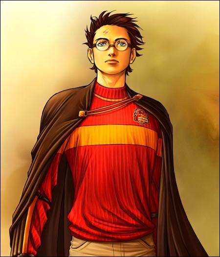 Quel garçon a, comme Harry, des cheveux d'un noir de jais ?