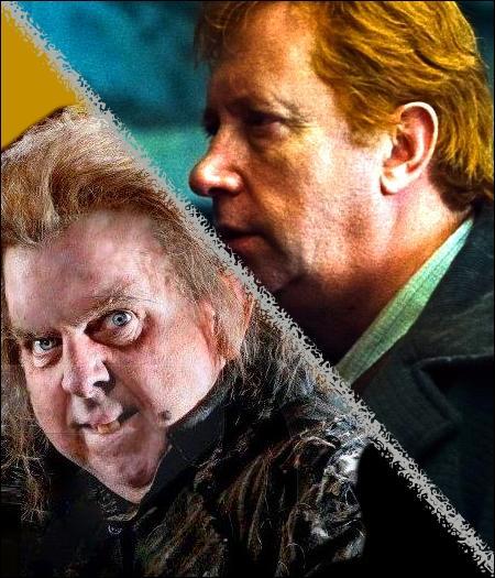 Quel est le point capillaire commun entre Arthur Weasley et Queudver ?