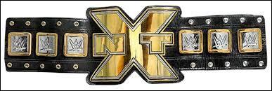 Quel membre du ''Shield'' a été le seul à avoir porté le titre de ''NXT Champion'' ?