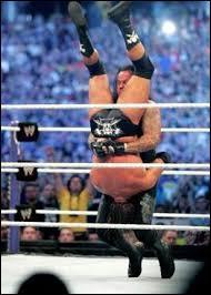 """Laquelle de ces superstars de la WWE n'a encaissé qu'un seul """"Tombston Piledriver"""" et a perdu par soumission contre l'Undertaker, lors d'un Wrestlemania ?"""