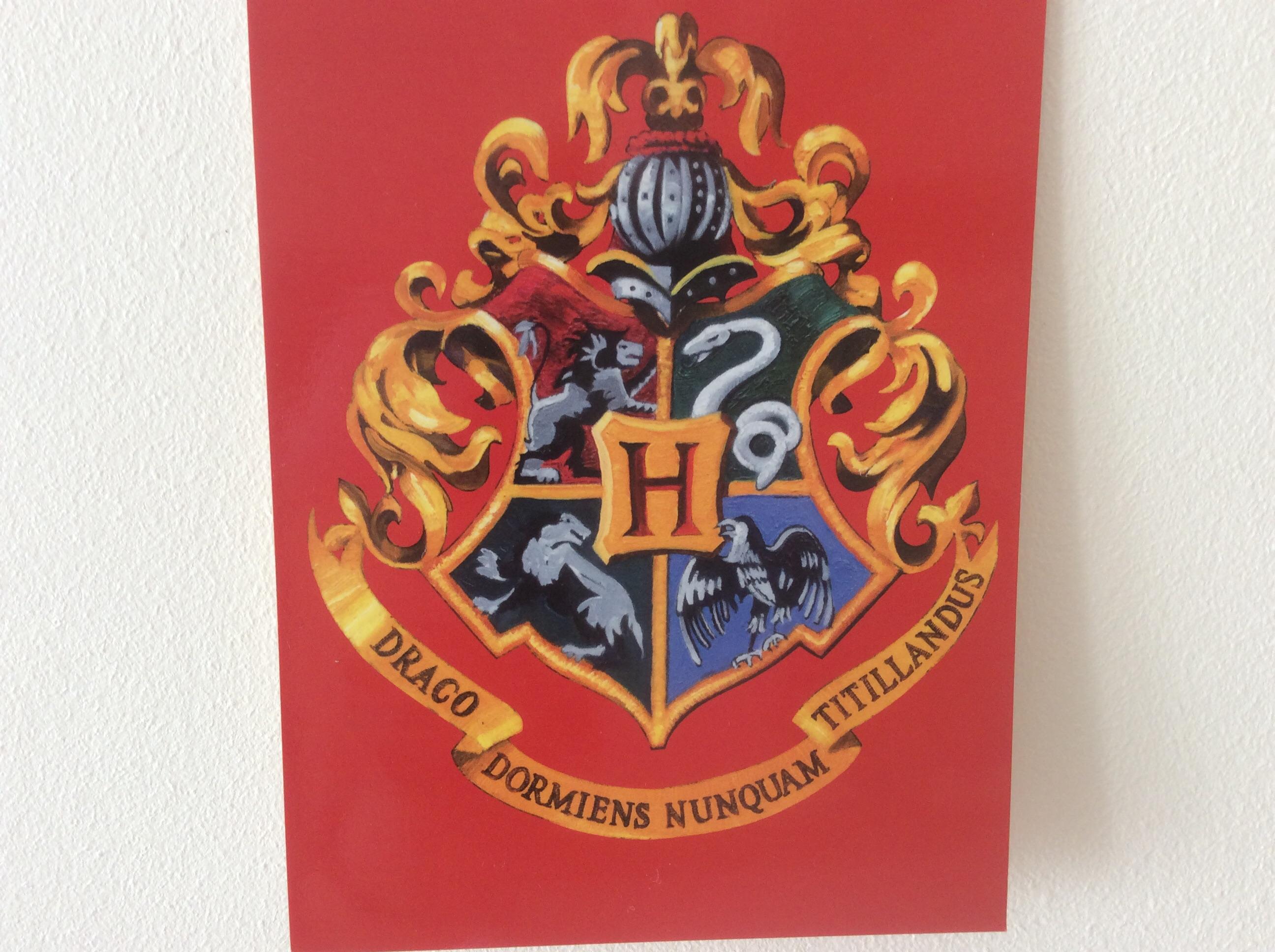 Les professeurs dans Harry Potter