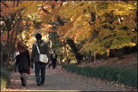 En écoutant « La balade des gens heureux », il se ballade dans son parc favori. ».Est-ce correct ?